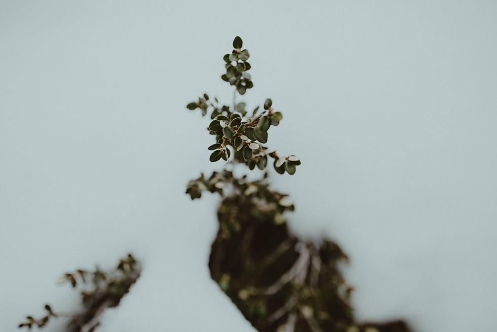 olguin-photography-lake-crackenback-engagement-shoot_007
